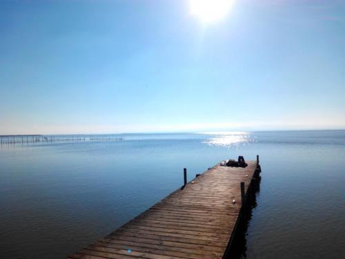 Valencia - Lago de la Albufera